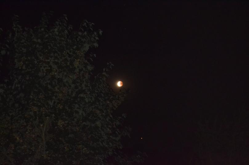Mondfinsternis vom 27.07.18 im Norden Deutschlands